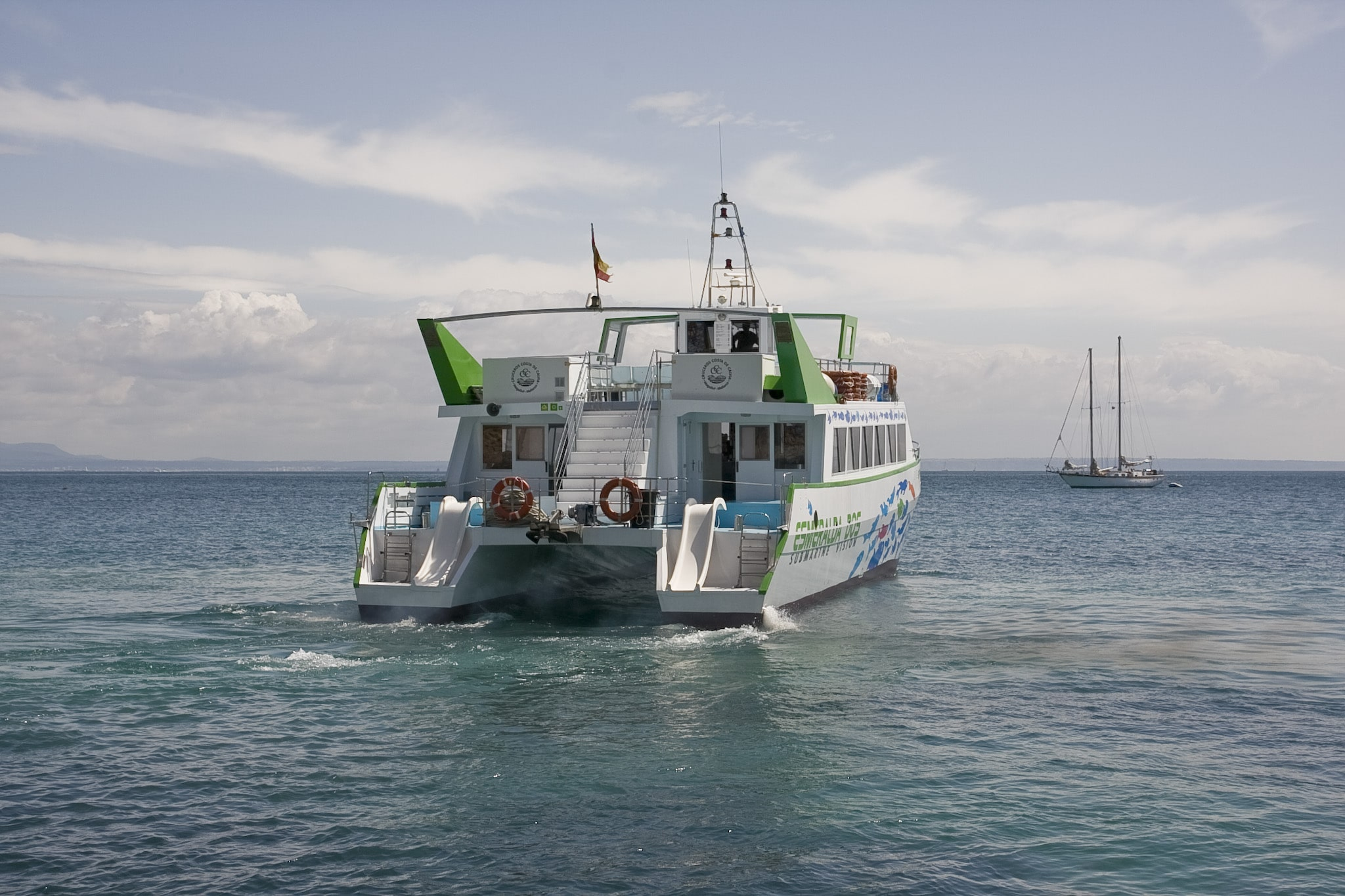 dolphin-boat-palma-nova