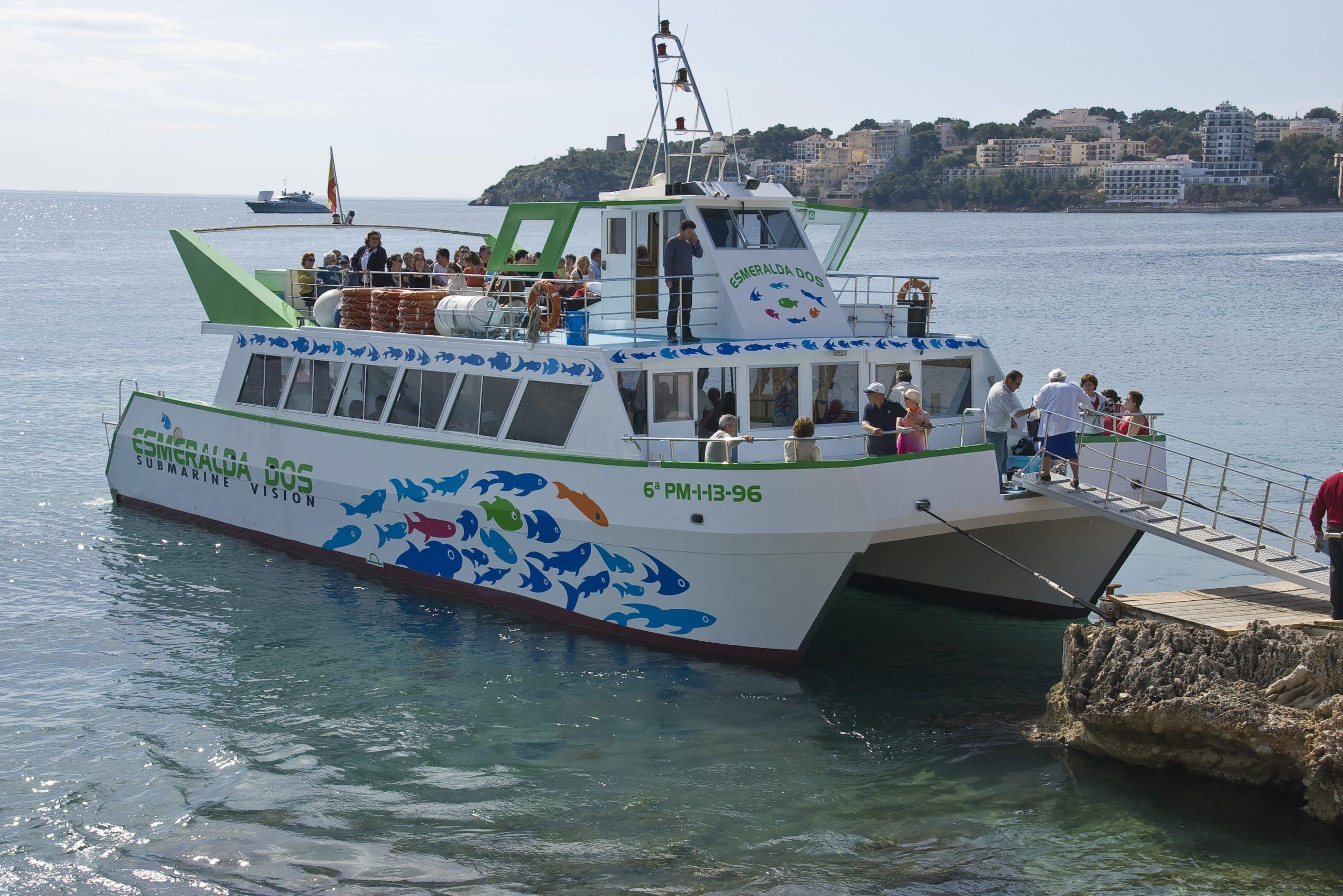 dolphin-family-boat-trip