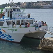 Dolphin Boat Magaluf